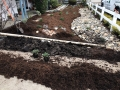 SAN-LUIS-OBISPO-landscaping-5