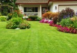 San Luis Obispo Residential Landscape